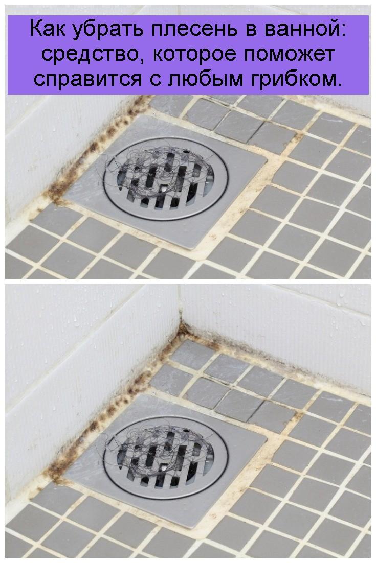 Как убрать плесень в ванной: средство, которое поможет справится с любым грибком 4
