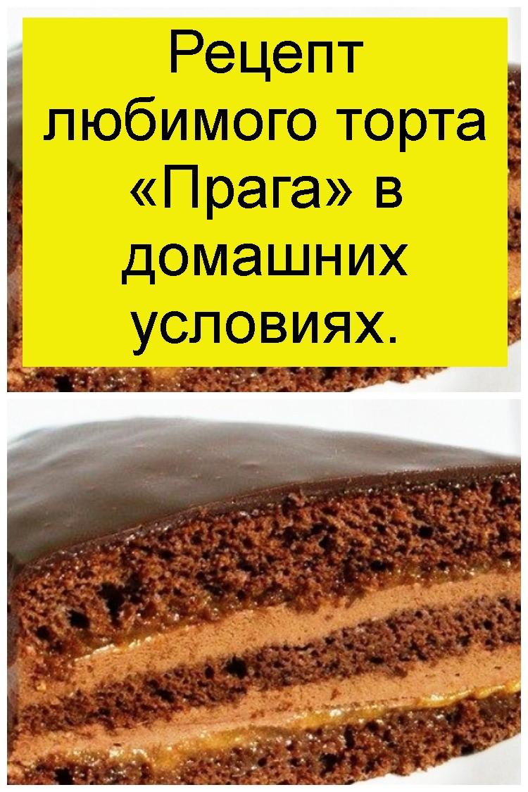Рецепт любимого торта «Прага» в домашних условиях 4