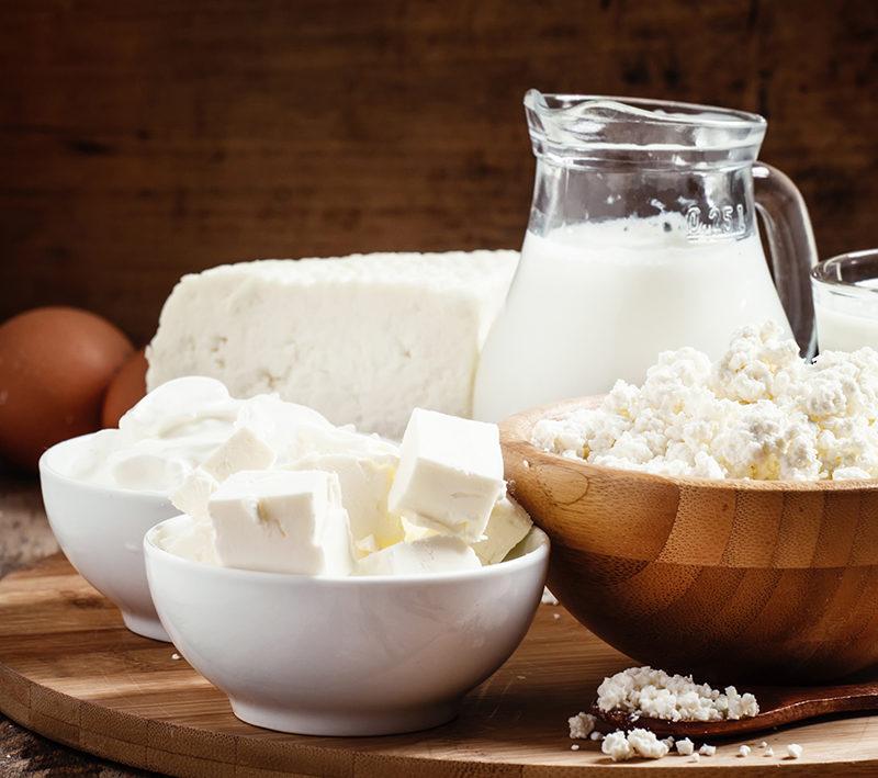 farm-organic-dairy-products-milk-yogurt-cream-cottage-cheese
