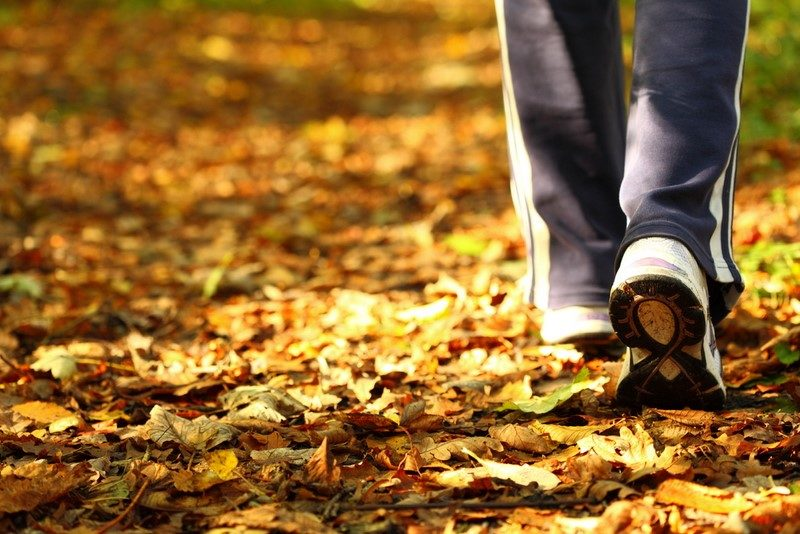 woman-walking-cross-country-trail-in-autumn-forest