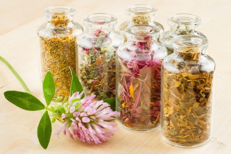 healing-herbs-in-glass-bottles-herbal-medicine